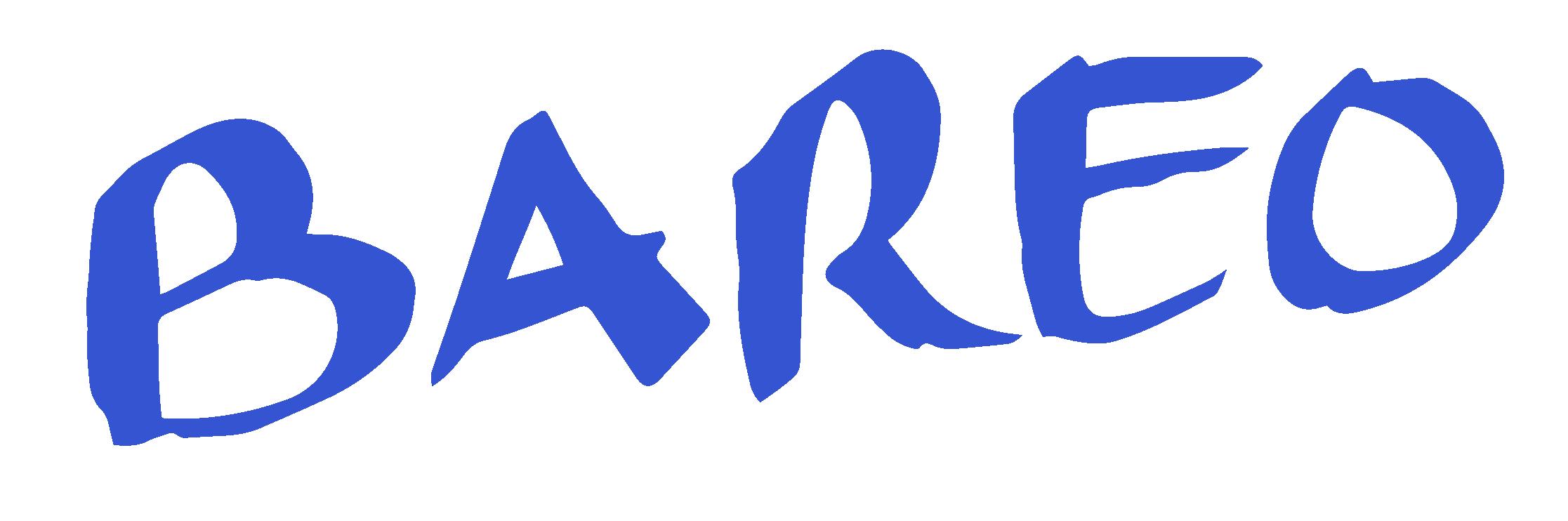 logo-bareo