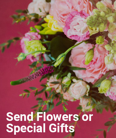 Send Flowers or Special Gifts